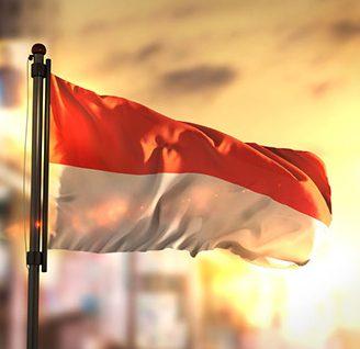 Economic Review ครึ่งปีแรกปี 2020 : อินโดนีเซีย