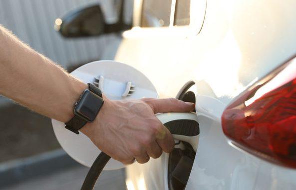 ผู้เชี่ยวชาญหนุนใช้วิธีย่อยสลายทางชีวภาพเพื่อการผลิตแบตเตอรี่รถยนต์ไฟฟ้าที่ยั่งยืน